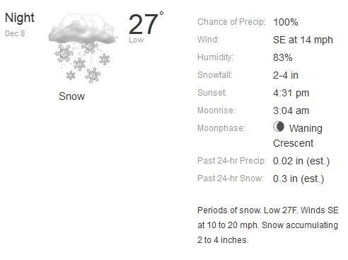 snowshot
